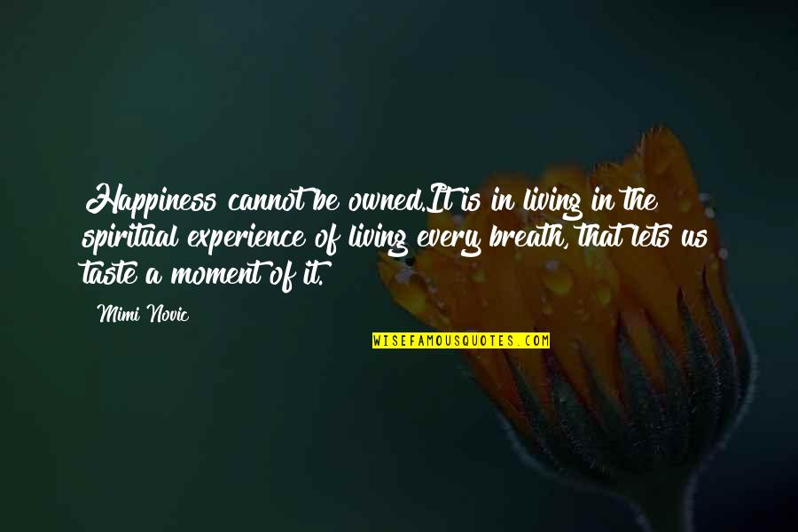 Living Every Moment Quotes By Mimi Novic: Happiness cannot be owned.It is in living in