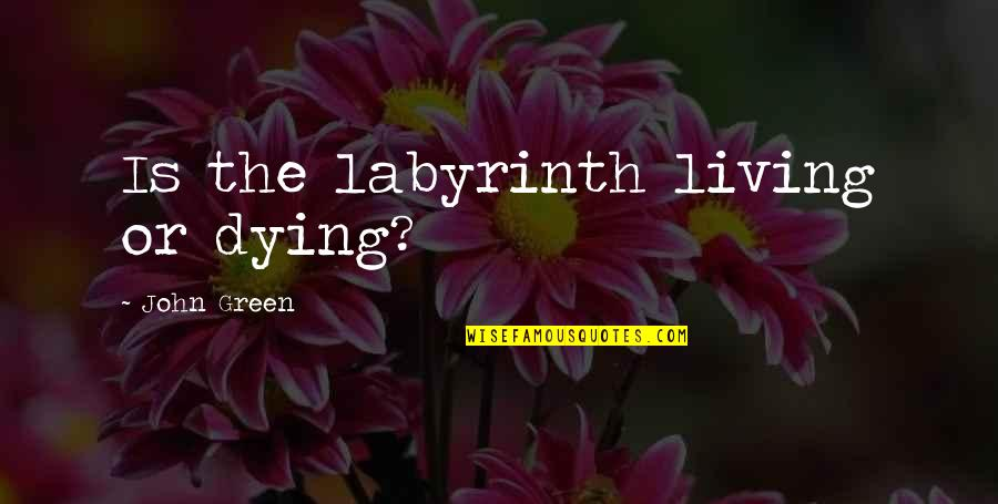 Living Green Quotes By John Green: Is the labyrinth living or dying?