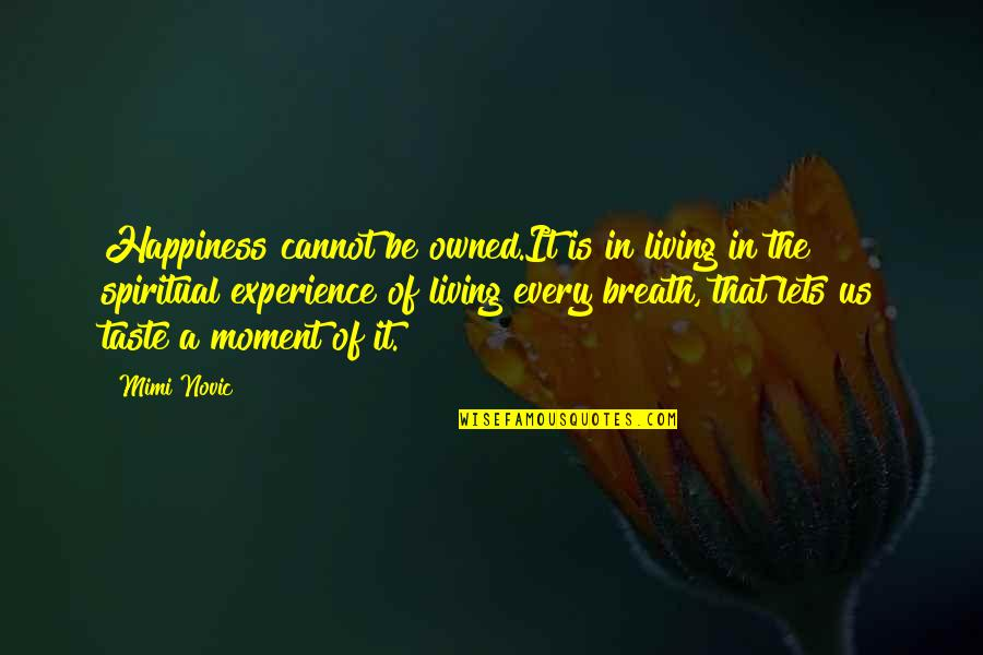 Living In The Moment Quotes By Mimi Novic: Happiness cannot be owned.It is in living in