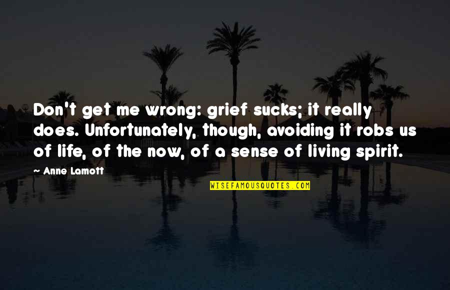 Living Life Now Quotes By Anne Lamott: Don't get me wrong: grief sucks; it really