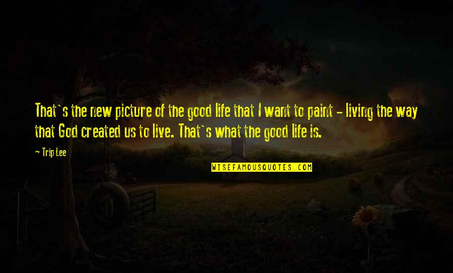 Living Life The Way You Want Quotes By Trip Lee: That's the new picture of the good life