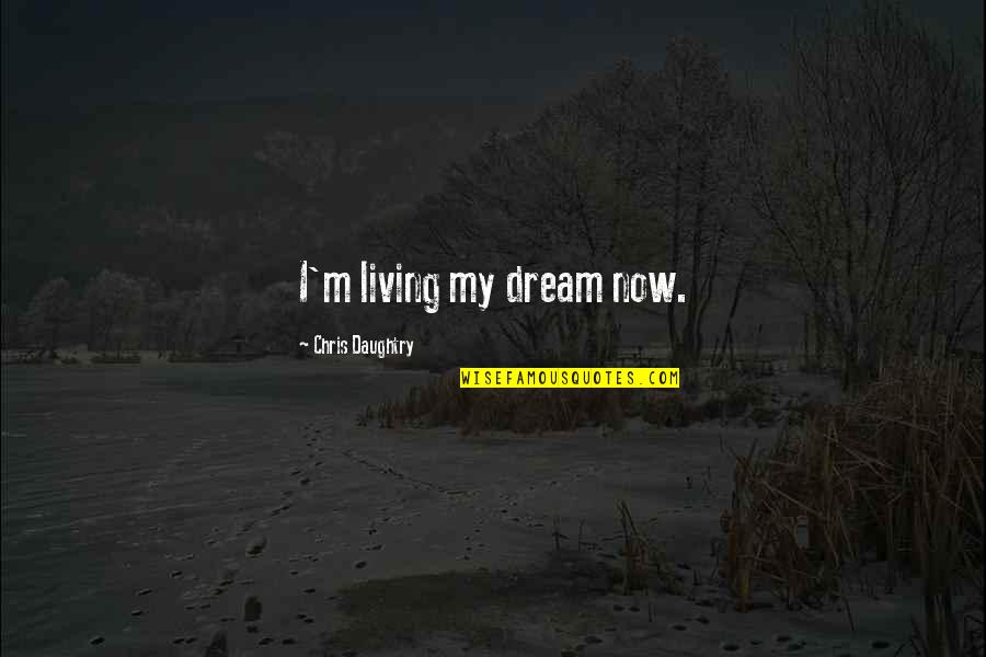 Living Now Quotes By Chris Daughtry: I'm living my dream now.