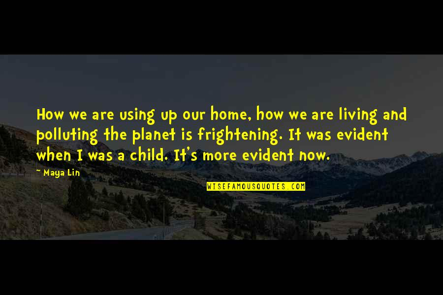 Living Now Quotes By Maya Lin: How we are using up our home, how