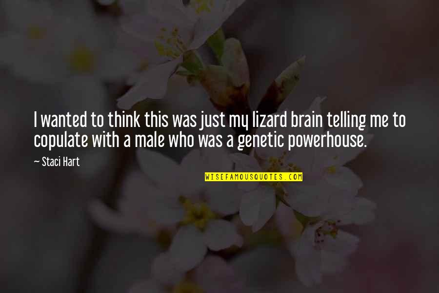 Lizard Brain Quotes By Staci Hart: I wanted to think this was just my
