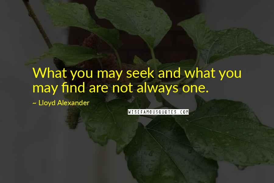 Lloyd Alexander quotes: What you may seek and what you may find are not always one.