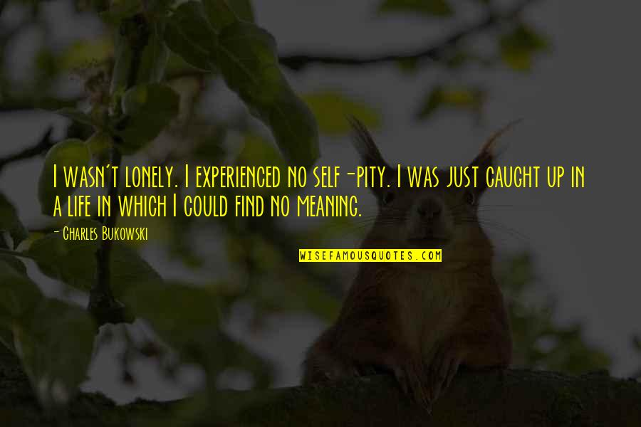 Lonely Life Quotes By Charles Bukowski: I wasn't lonely. I experienced no self-pity. I