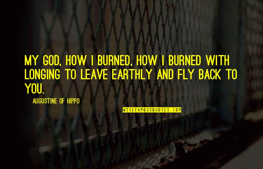 Longing For God Quotes By Augustine Of Hippo: My God, how I burned, how I burned