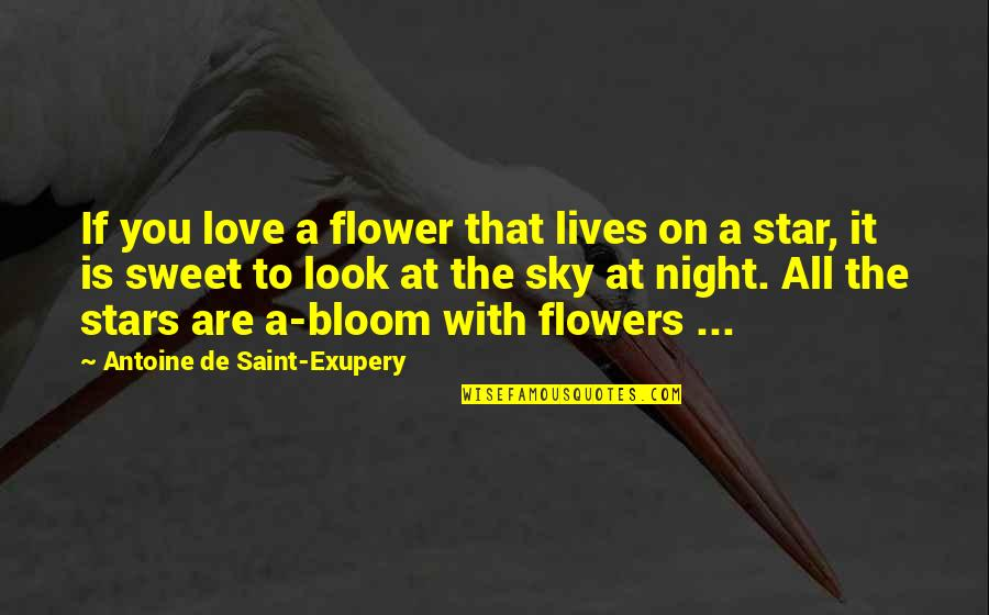 Look The Sky Quotes By Antoine De Saint-Exupery: If you love a flower that lives on