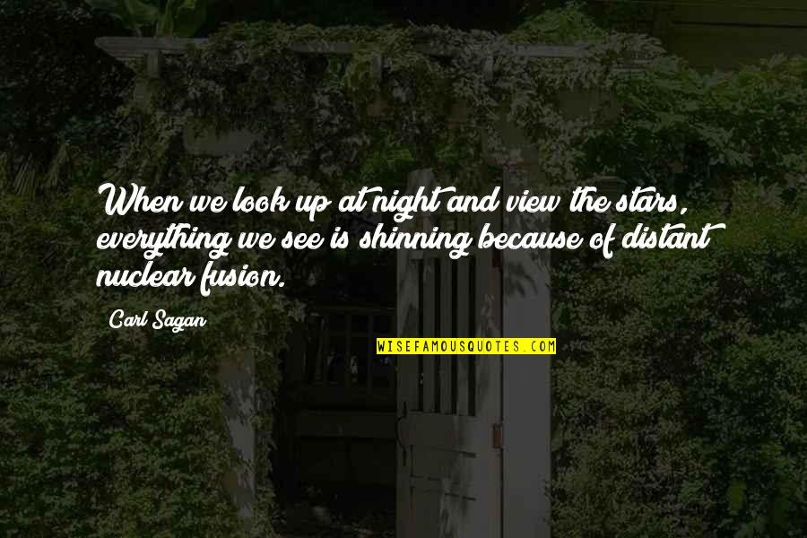 Look The Sky Quotes By Carl Sagan: When we look up at night and view