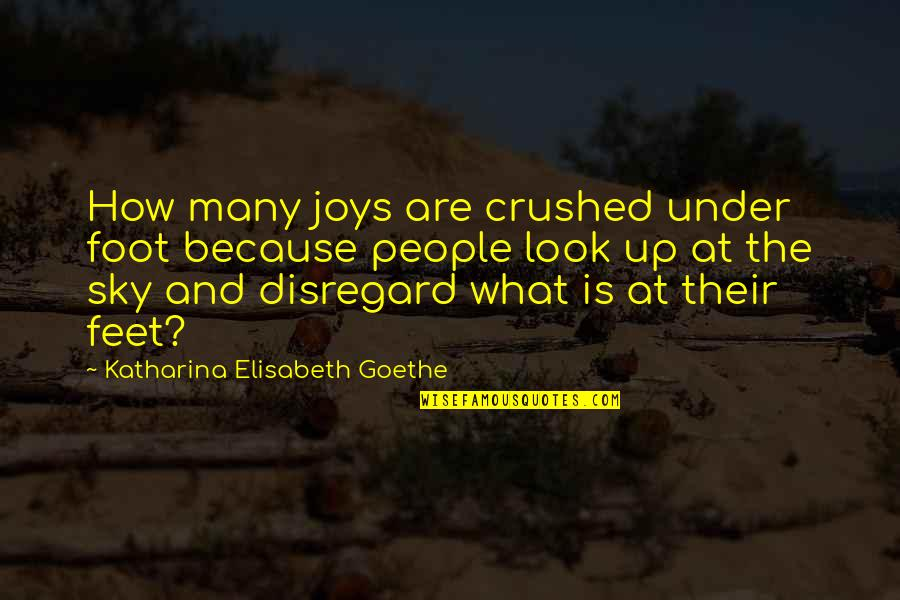 Look The Sky Quotes By Katharina Elisabeth Goethe: How many joys are crushed under foot because