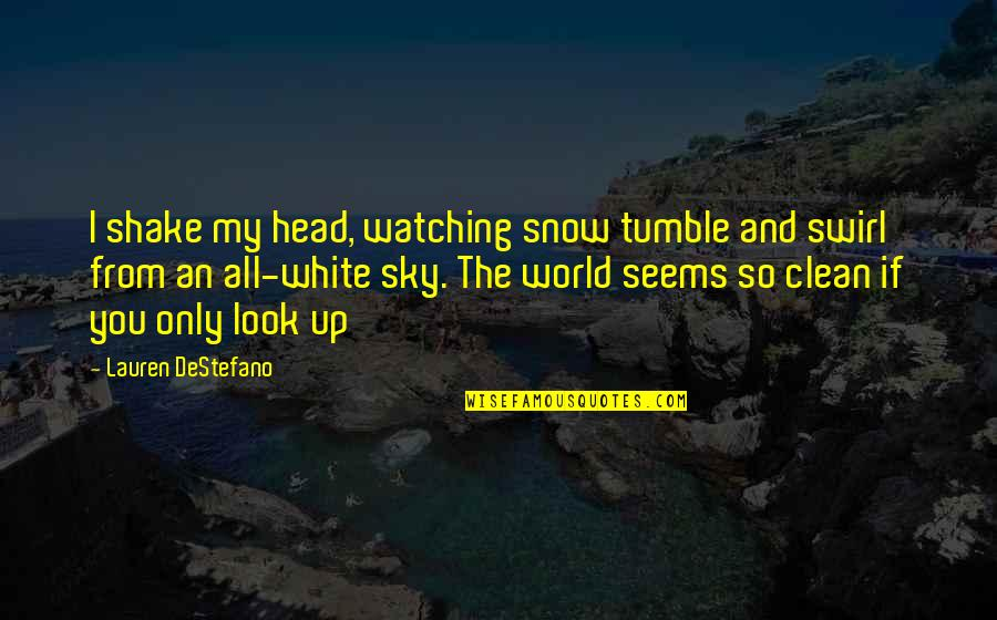 Look The Sky Quotes By Lauren DeStefano: I shake my head, watching snow tumble and