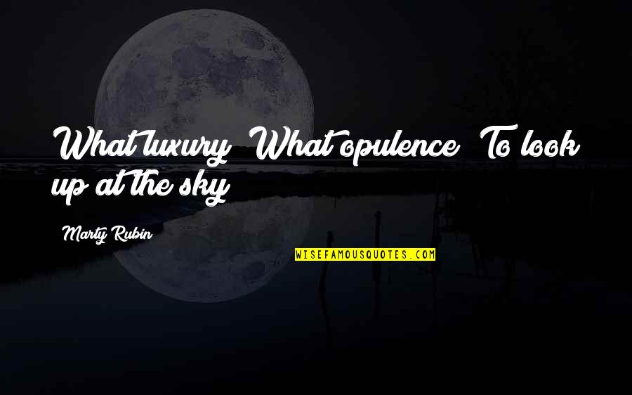 Look The Sky Quotes By Marty Rubin: What luxury! What opulence! To look up at