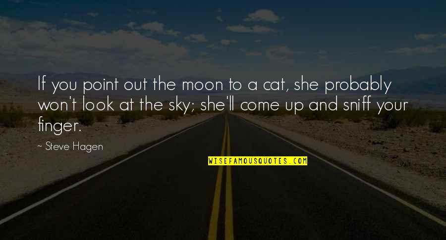 Look The Sky Quotes By Steve Hagen: If you point out the moon to a
