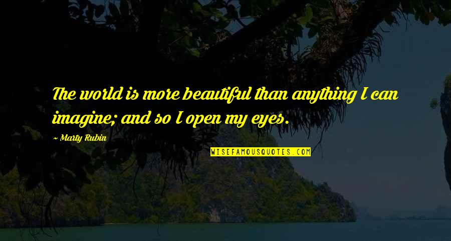 Looking Into Each Other's Eyes Quotes By Marty Rubin: The world is more beautiful than anything I