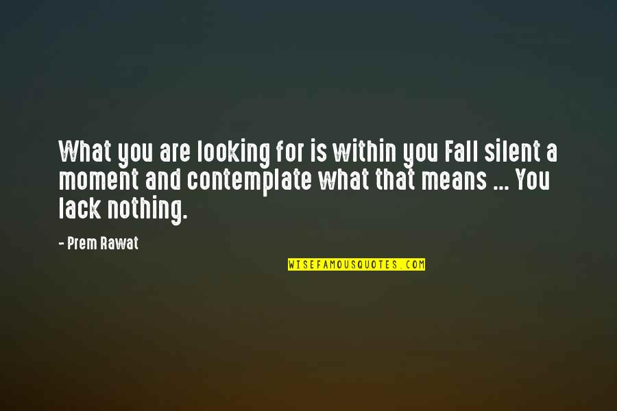 Looking Within Quotes By Prem Rawat: What you are looking for is within you