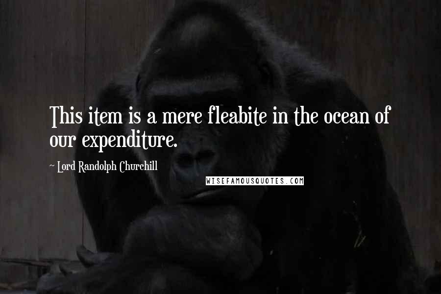 Lord Randolph Churchill quotes: This item is a mere fleabite in the ocean of our expenditure.