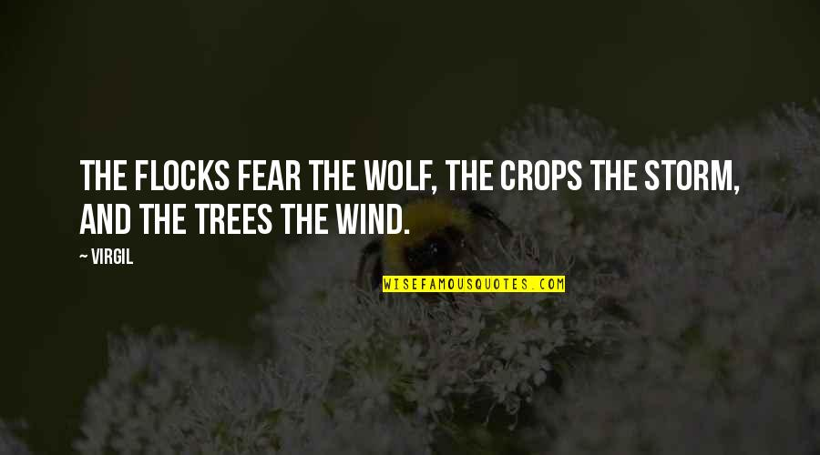 Lord Thomas Babington Macaulay Quotes By Virgil: The flocks fear the wolf, the crops the