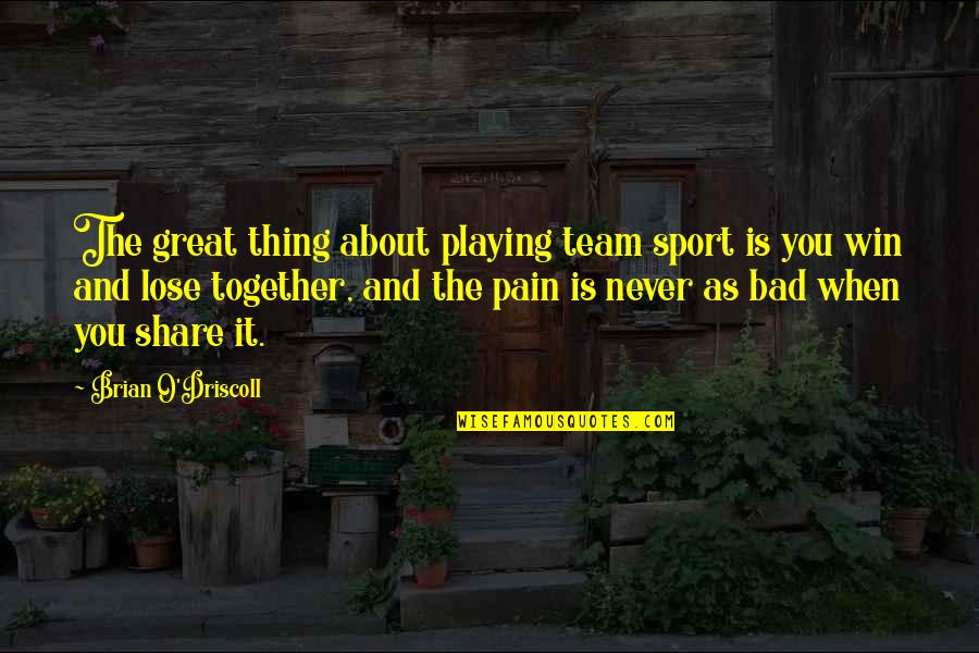 Lose And Win Quotes By Brian O'Driscoll: The great thing about playing team sport is