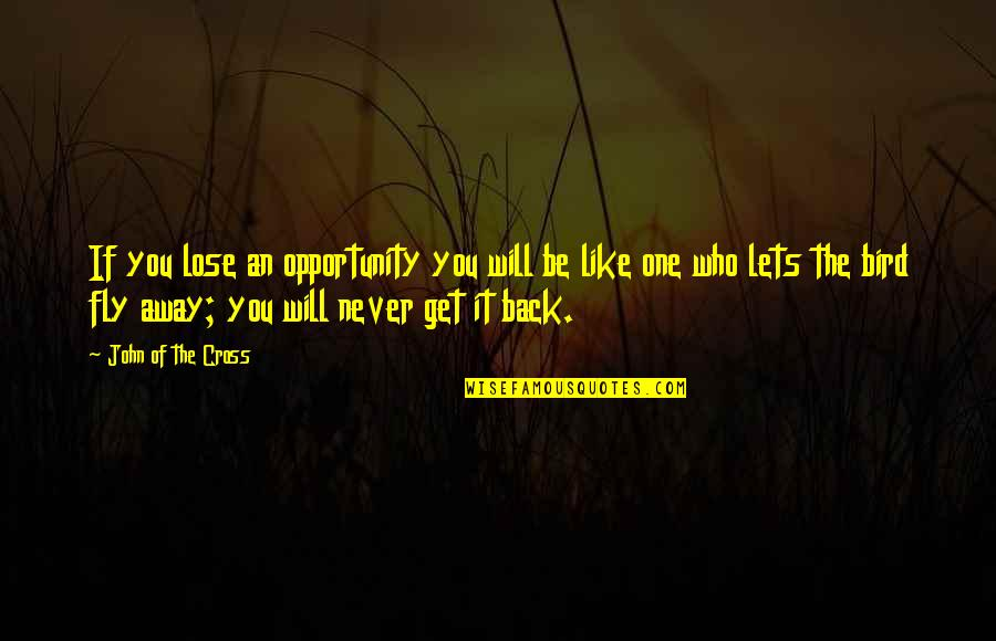 Lose It Quotes By John Of The Cross: If you lose an opportunity you will be