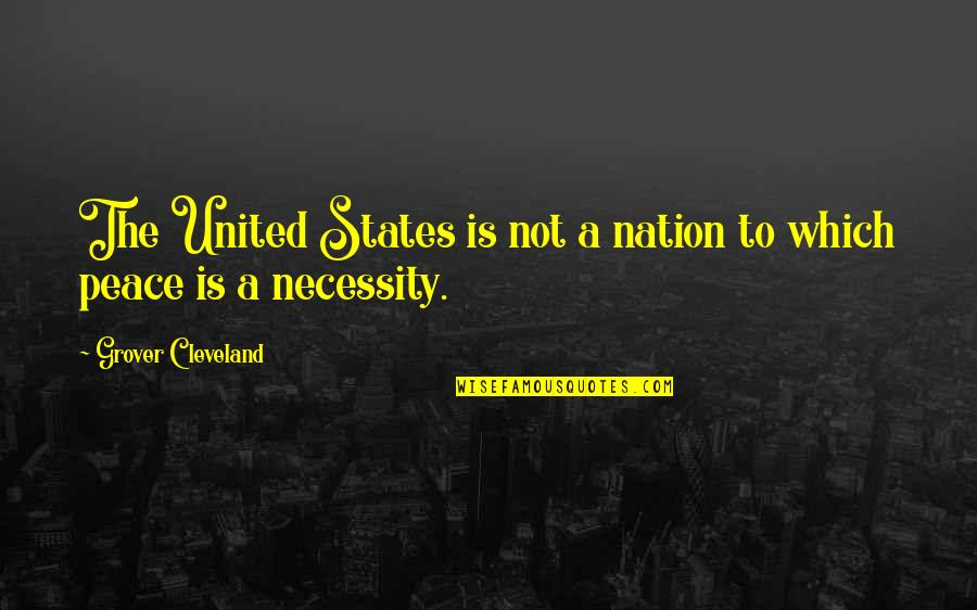Lose Yourself To Dance Quotes By Grover Cleveland: The United States is not a nation to