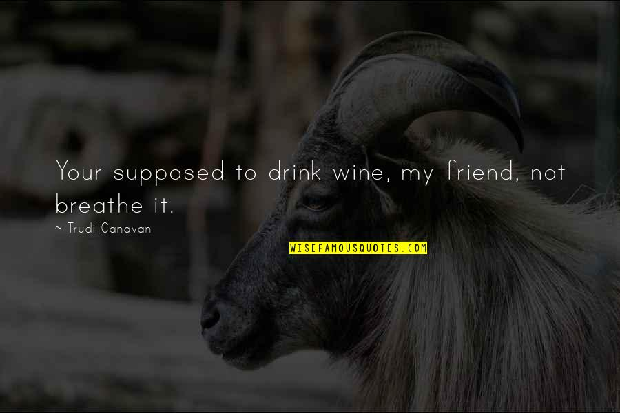 Losing A Loved Pet Quotes By Trudi Canavan: Your supposed to drink wine, my friend, not
