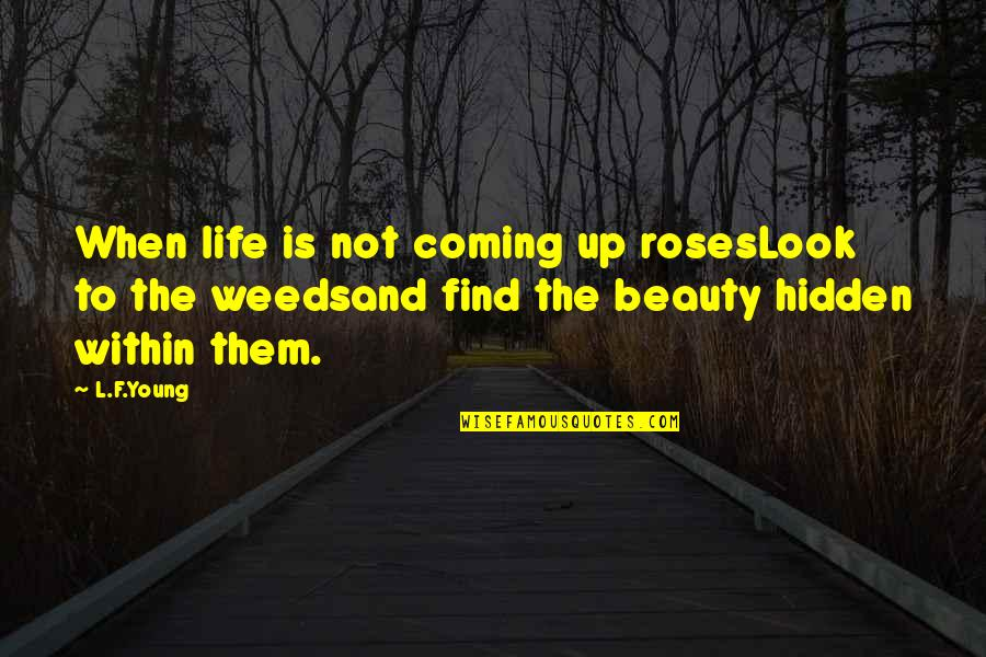 Losing Someone So Close Quotes By L.F.Young: When life is not coming up rosesLook to