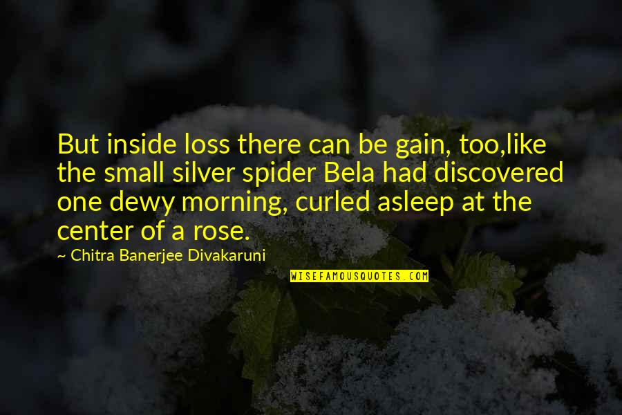 Loss Of A Child Quotes By Chitra Banerjee Divakaruni: But inside loss there can be gain, too,like