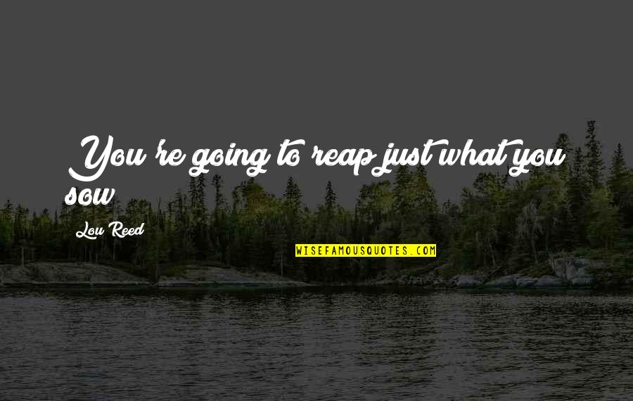 Lou Reed Quotes By Lou Reed: You're going to reap just what you sow