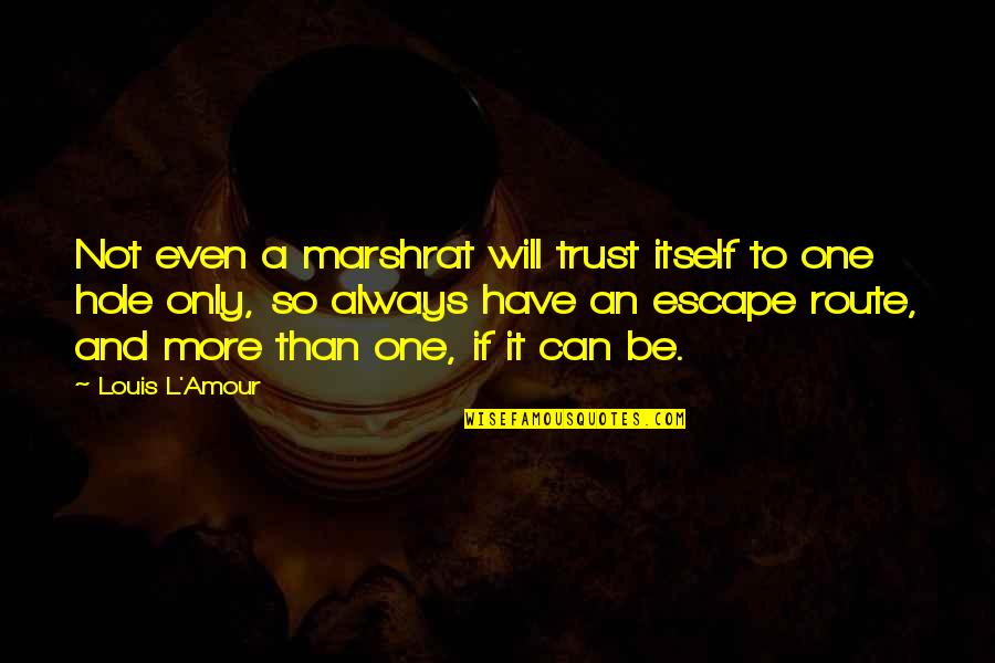 Louis L'amour Quotes By Louis L'Amour: Not even a marshrat will trust itself to
