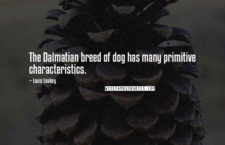 Louis Leakey quotes: The Dalmatian breed of dog has many primitive characteristics.