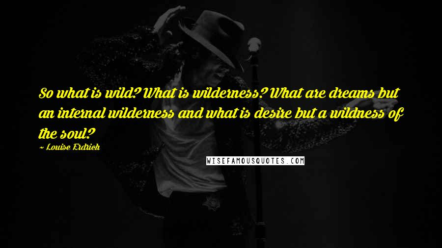 Louise Erdrich quotes: So what is wild? What is wilderness? What are dreams but an internal wilderness and what is desire but a wildness of the soul?