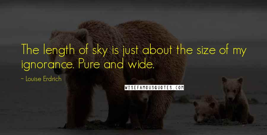 Louise Erdrich quotes: The length of sky is just about the size of my ignorance. Pure and wide.