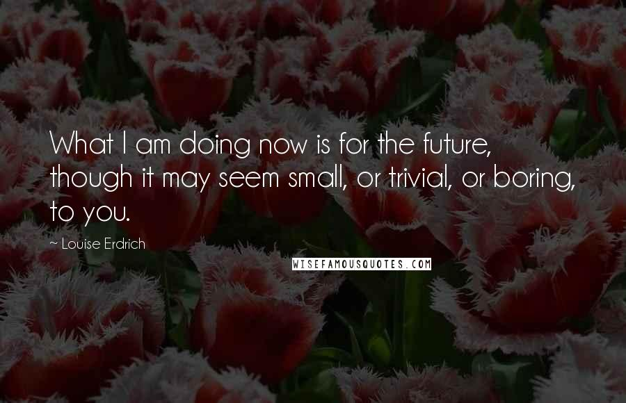 Louise Erdrich quotes: What I am doing now is for the future, though it may seem small, or trivial, or boring, to you.