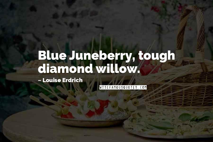 Louise Erdrich quotes: Blue Juneberry, tough diamond willow.