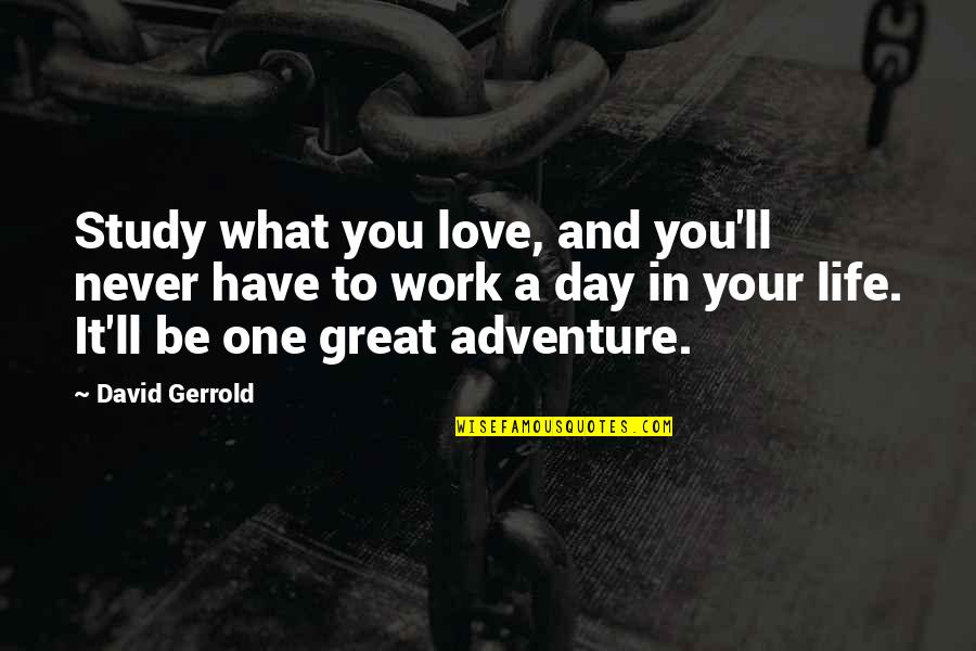 Love And Adventure Quotes By David Gerrold: Study what you love, and you'll never have