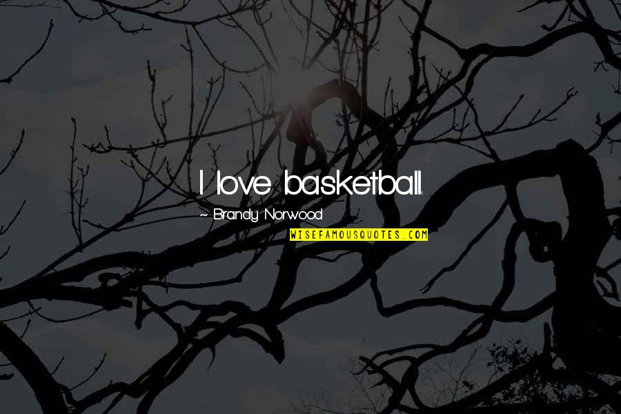 Love And Basketball Quotes By Brandy Norwood: I love basketball.