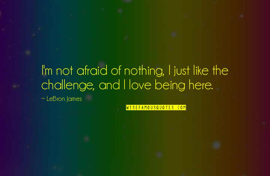 Love And Basketball Quotes By LeBron James: I'm not afraid of nothing, I just like