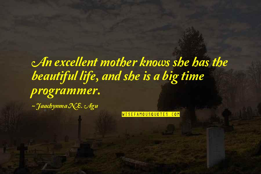 Love And Life And Family Quotes By Jaachynma N.E. Agu: An excellent mother knows she has the beautiful