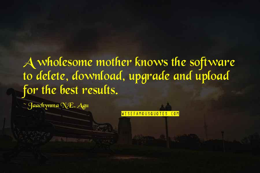 Love And Marriage And Family Quotes By Jaachynma N.E. Agu: A wholesome mother knows the software to delete,