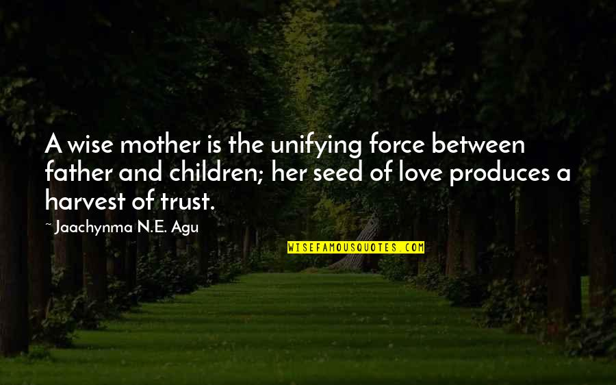 Love And Marriage And Family Quotes By Jaachynma N.E. Agu: A wise mother is the unifying force between