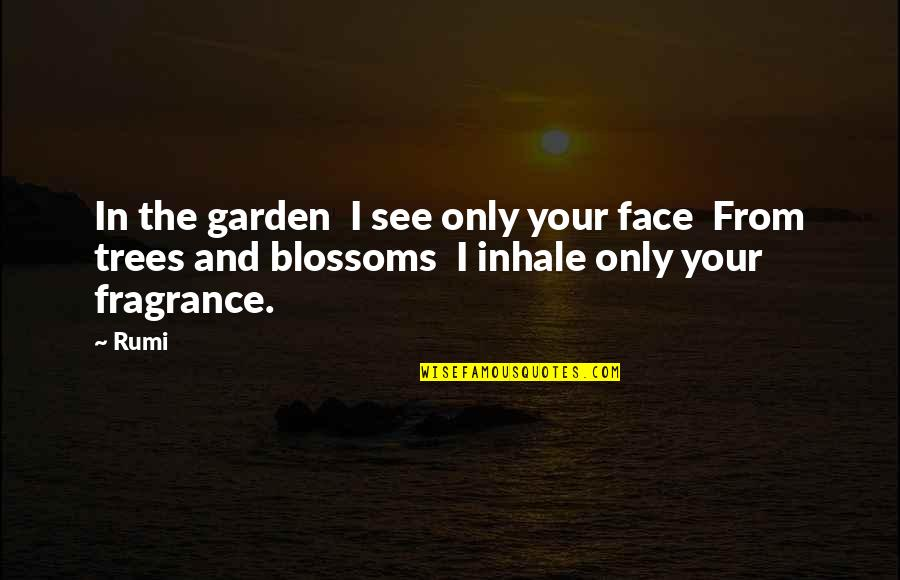 Love And Vices Quotes By Rumi: In the garden I see only your face