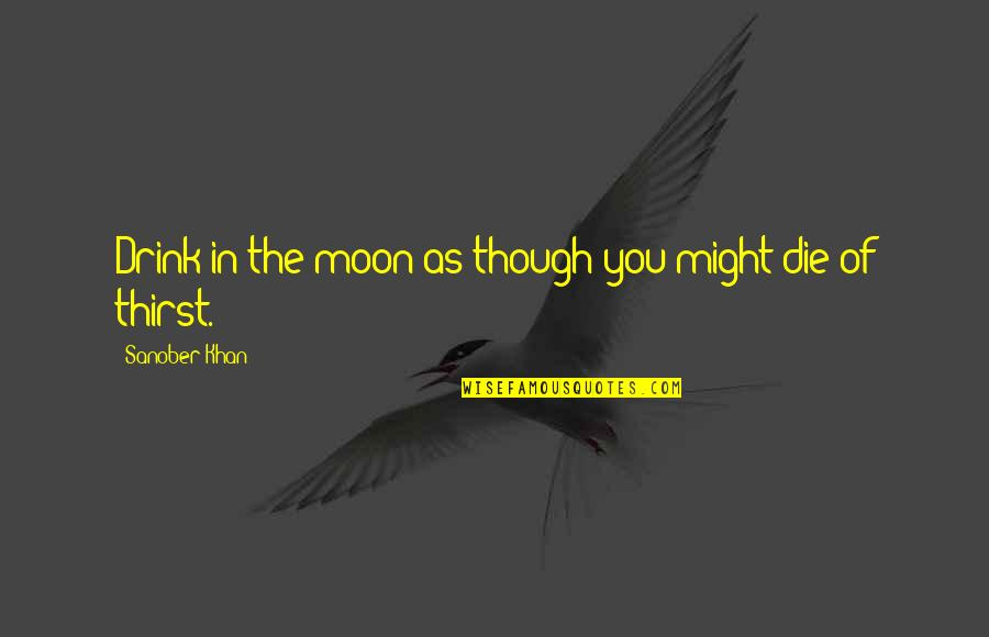 Love As Though Quotes By Sanober Khan: Drink in the moon as though you might