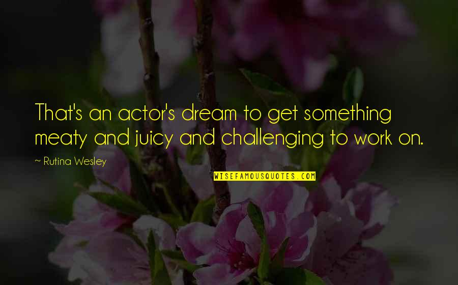 Love Can Last A Lifetime Quotes By Rutina Wesley: That's an actor's dream to get something meaty