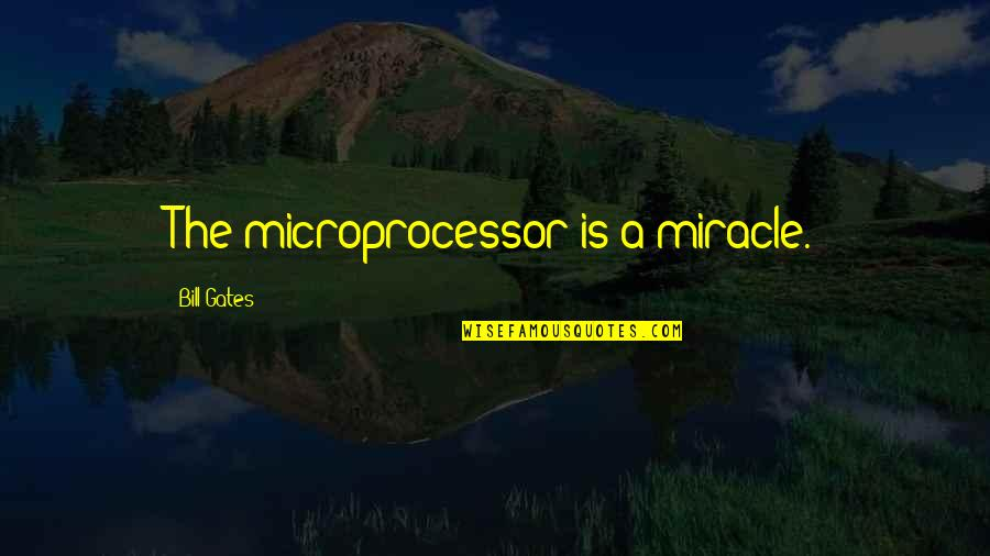Love Despite Problems Quotes By Bill Gates: The microprocessor is a miracle.