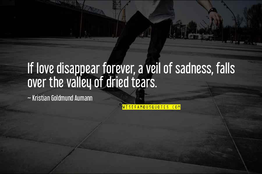 Love Doesn't Come Easy Quotes By Kristian Goldmund Aumann: If love disappear forever, a veil of sadness,