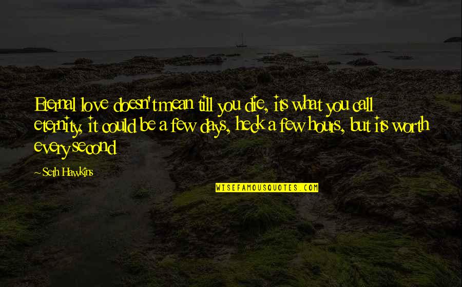 Love Doesn't Mean Quotes By Seth Hawkins: Eternal love doesn't mean till you die, its