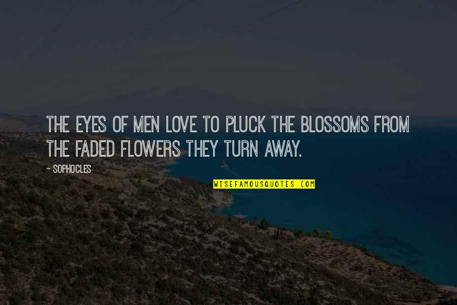 Love Faded Quotes By Sophocles: The eyes of men love to pluck the