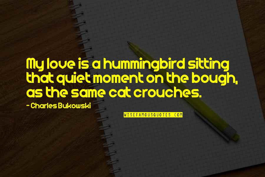 Love For Your Cat Quotes By Charles Bukowski: My love is a hummingbird sitting that quiet