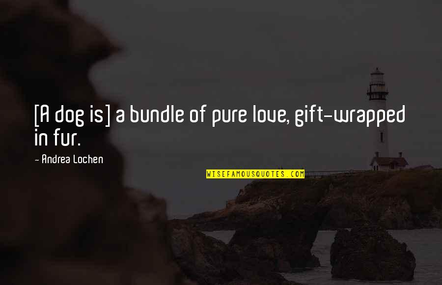 Love For Your Dog Quotes By Andrea Lochen: [A dog is] a bundle of pure love,