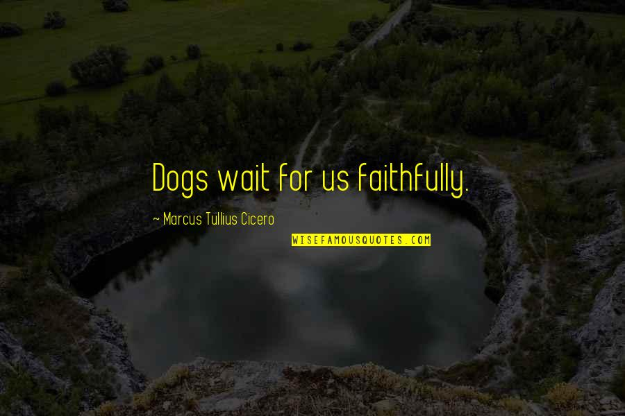 Love For Your Dog Quotes By Marcus Tullius Cicero: Dogs wait for us faithfully.